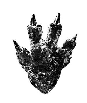 Godzilla-Resurgence-huellita-1-animees